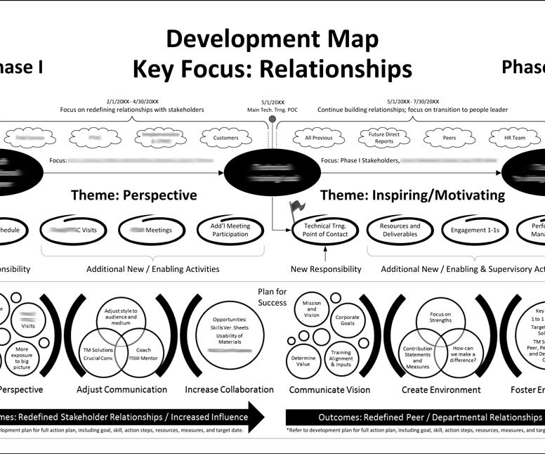 Visual Model and Map for Professional Development