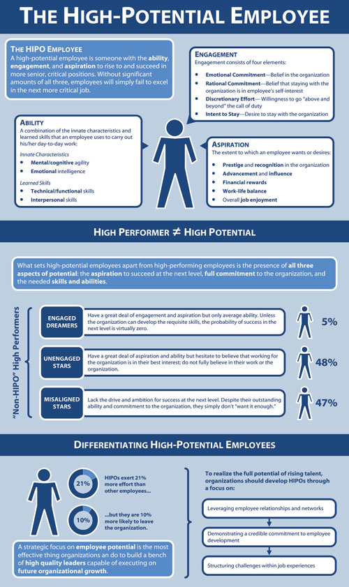 """Infographic on """"The High Potential Employee"""""""