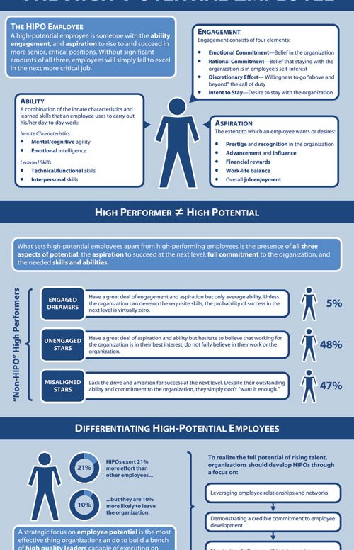 "Infographic on ""The High Potential Employee"""